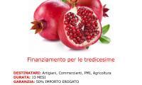 FINANZIAMENTI PER TREDICESIME FINO A 12/13 MESI !